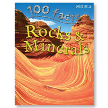 Load image into Gallery viewer, 100 Facts Rocks and Minerals
