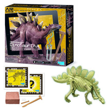 Load image into Gallery viewer, 4M Stegosaurus Dinosaur DNA Kit
