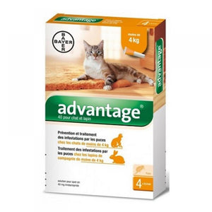 Advantage for spot-on cats 4x0.4 ml - mydrxm.com