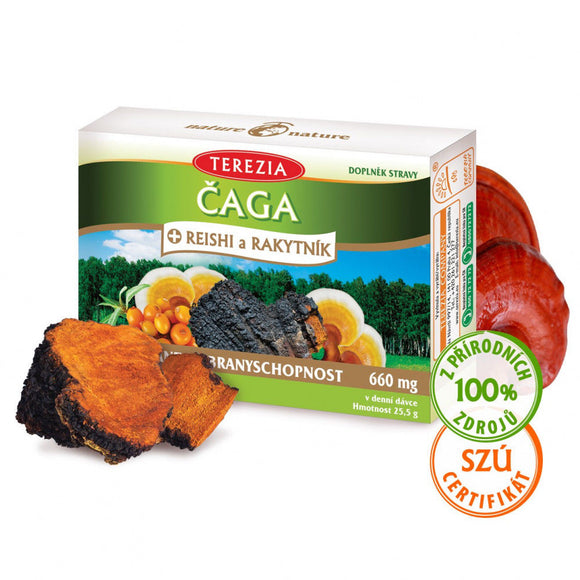 Organic Chaga + Reishi Mushrooms + Sea Buckthorn Antioxidant 60 pcs vitamins BIO - mydrxm.com