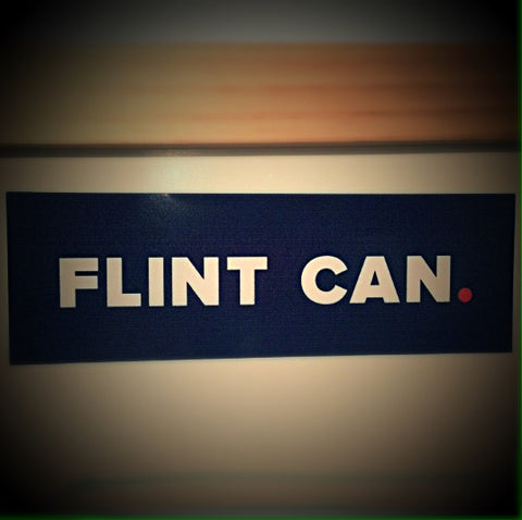 Flint Can Flint Will Car Decal - Stand Up Flint