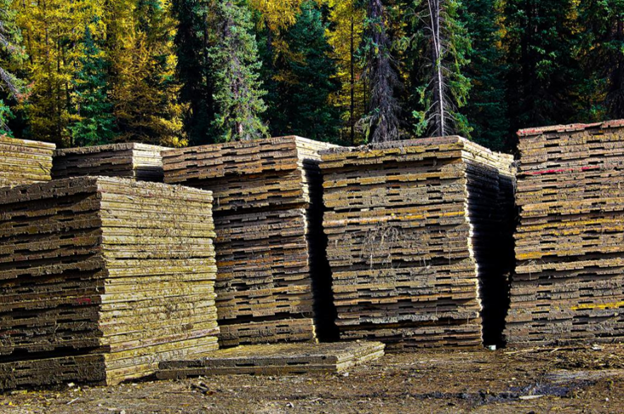 6 stacks of well used 3 ply wooden Access Mats / Swamp Mats