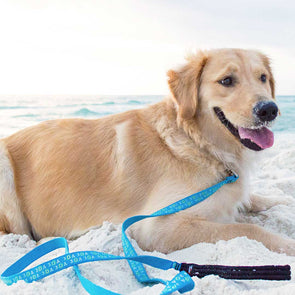 30A Recycled Pet Leash