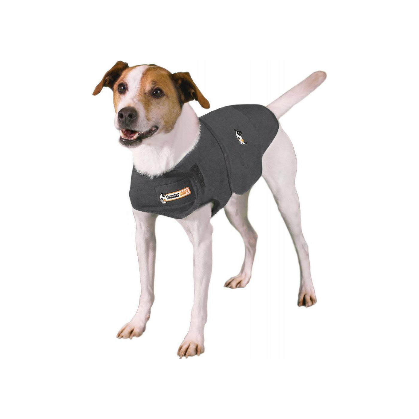 Thundershirt Anxiety Solution for Dogs