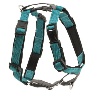 PetSafe® 3 in 1 Harness Teal