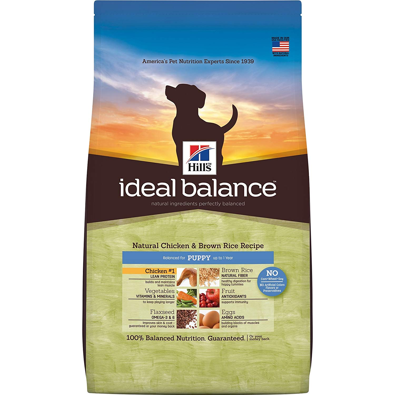 Hill's Ideal Balance Puppy Natural Chicken & Brown Rice Recipe Dry Dog Food