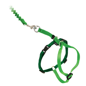 PetSafe® Come With Me Kitty™ Harness and Bungee Leash Electric Lime