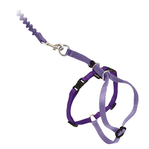 PetSafe® Come With Me Kitty™ Harness and Bungee Leash Lilac