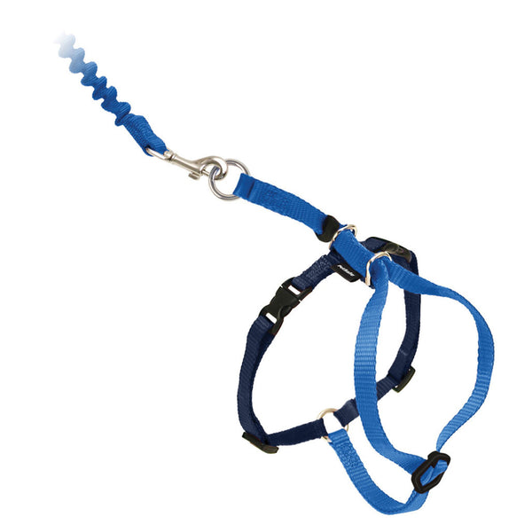 PetSafe® Come With Me Kitty™ Harness and Bungee Leash Royal Blue