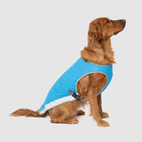 Canada Pooch Chill Seeker Cooling Vest in Aqua