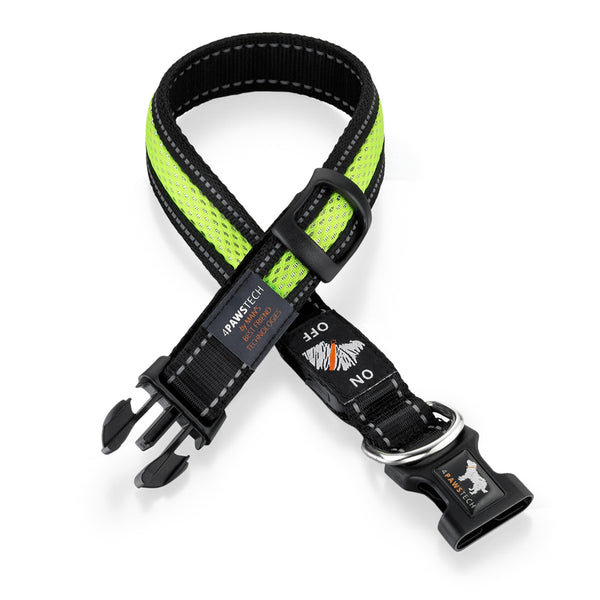 4 Paws Tech Nightlight LED Collar in Lime