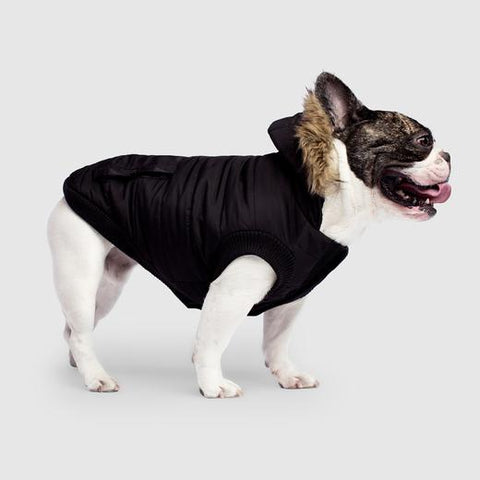 Canada Pooch North Pole Parka in Black