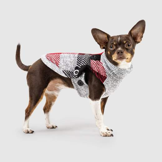 Canada Pooch Northern Knit 2.0 in Plaid