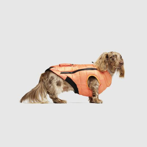 Canada Pooch Peak Performance Vest in Orange