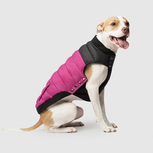 Canada Pooch Summit Stretch Puffer Vest in Plum