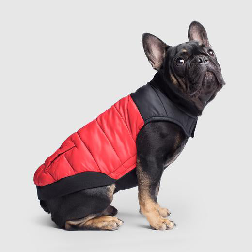 Canada Pooch Summit Stretch Puffer Vest in Red