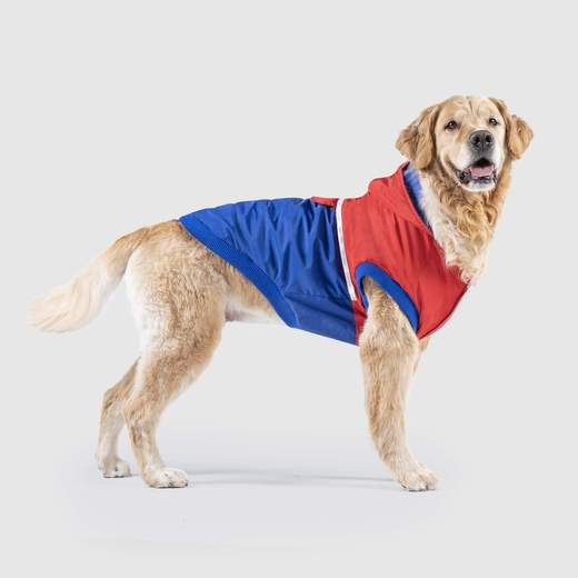 Canada Pooch 360 Jacket in Red & Blue