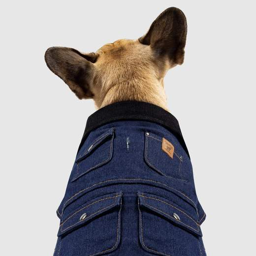 Canada Pooch The Worker Jacket in Denim