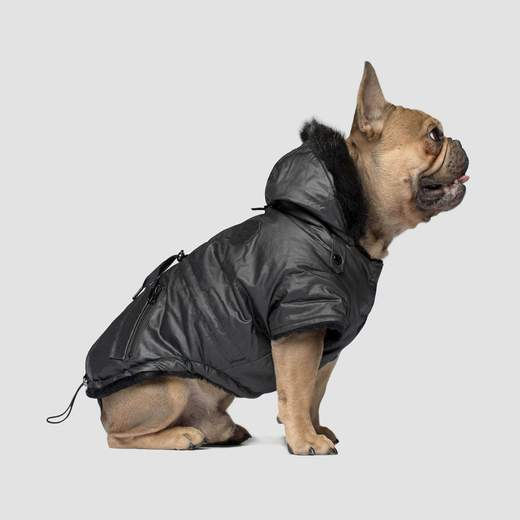 Canada Pooch Urban Wax Parka in Black
