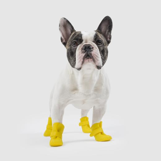 Canada Pooch Unlined Wellies in Yellow