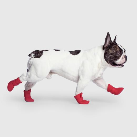 Canada Pooch Unlined Wellies in Red