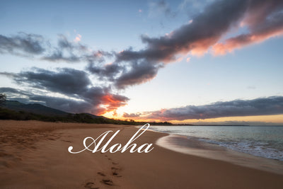 ALOHA Part I: Welcome back to the Blog!