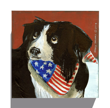 Gallery Grand - Dog Face - Border Collie