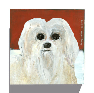 Gallery Grand - Dog Face - Maltese