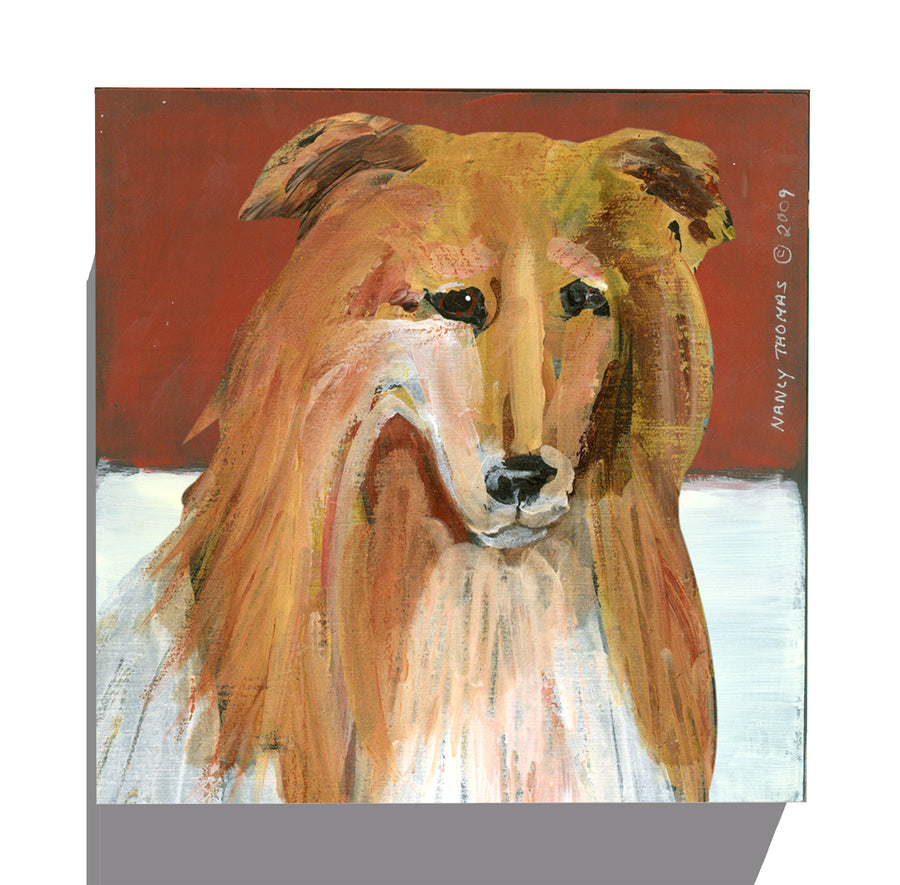 Gallery Canvas - Dog Face - Collie