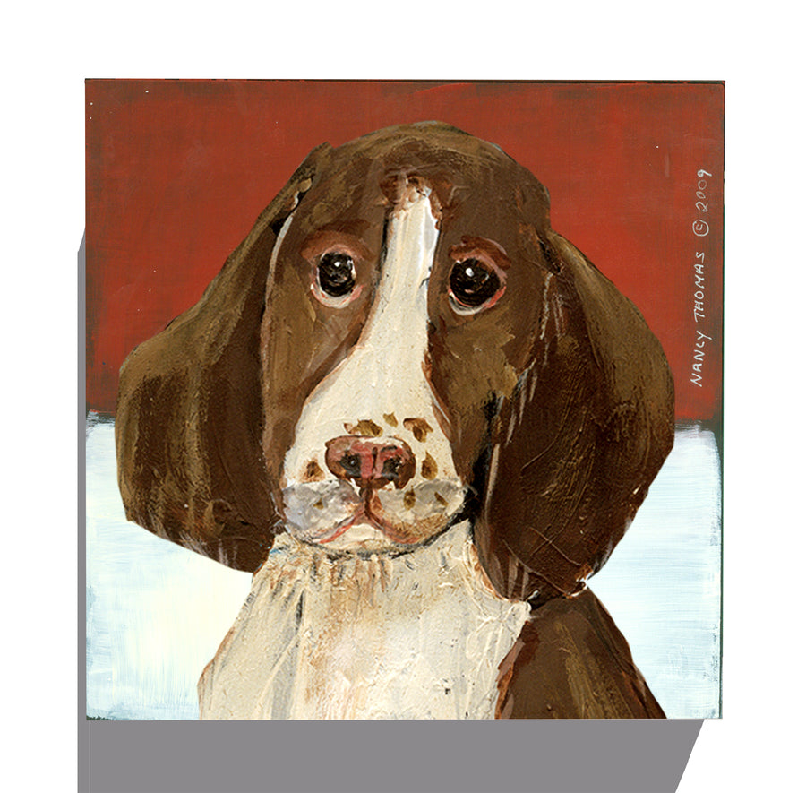 Gallery Canvas - Dog Face - Springer Spaniel