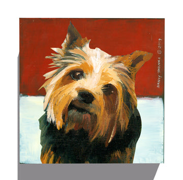 Gallery Grand - Dog Face - Norwich Terrier