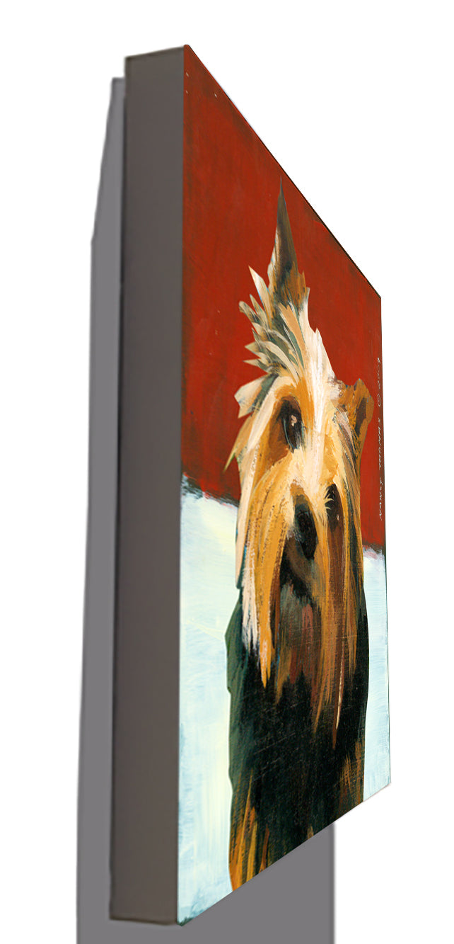 Gallery Canvas - Dog Face - Norwich Terrier