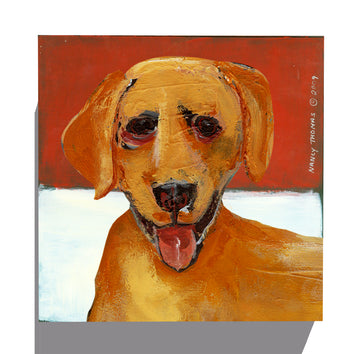 Gallery Canvas - Dog Face - Yellow Lab