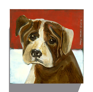 Gallery Grand - Dog Face - Boxer