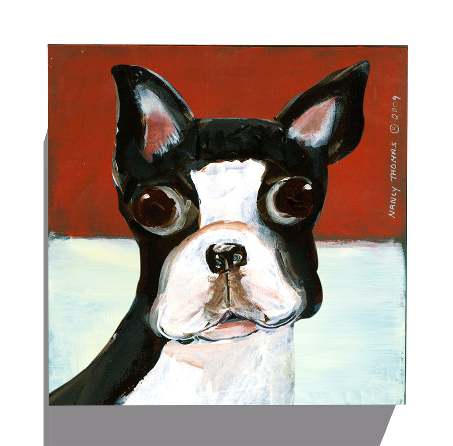 Gallery Grand - Dog Face - Boston Terrier