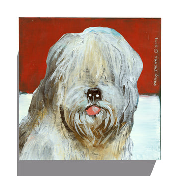 Gallery Canvas - Dog Face - Sheepdog