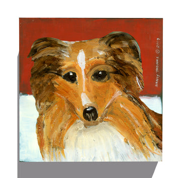 Gallery Canvas - Dog Face - Sheltie