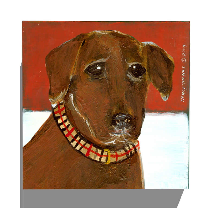 Gallery Canvas - Dog Face - Chocolate Lab