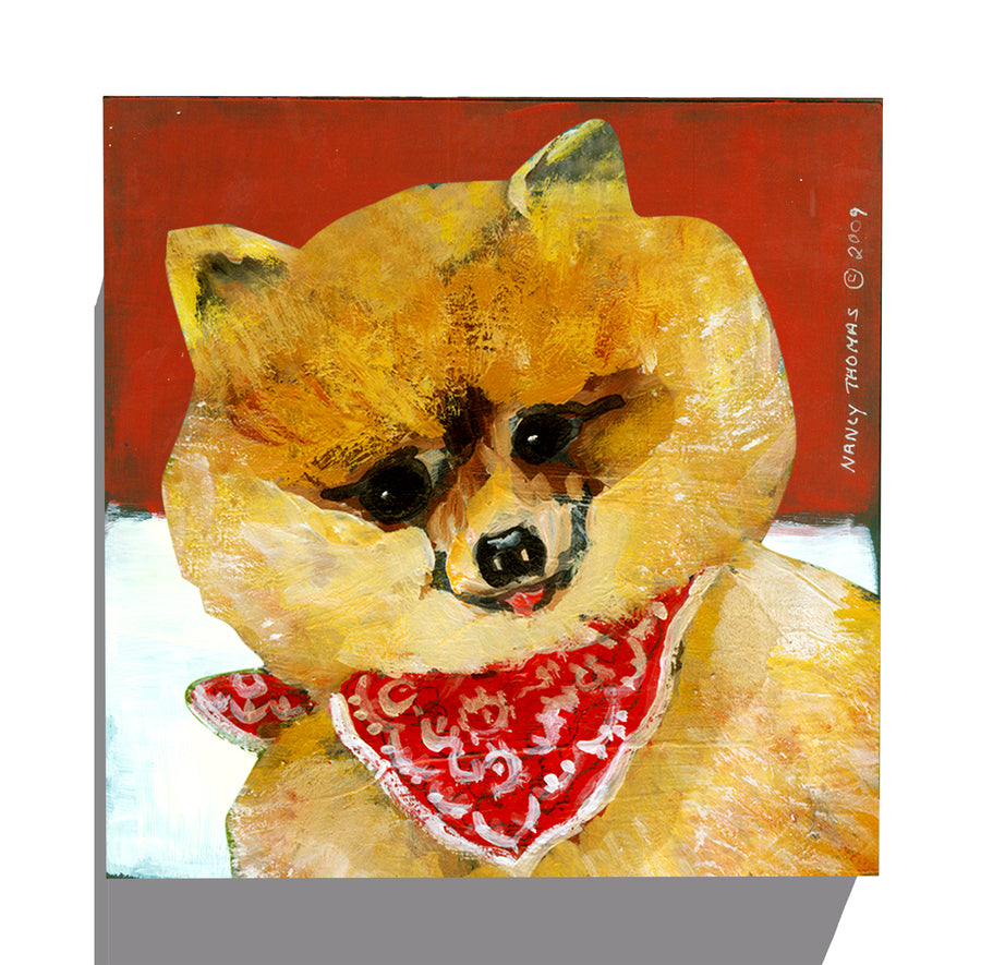 Gallery Grand - Dog Face - Pomeranian