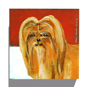 Gallery Canvas - Dog Face - Shih Tzu
