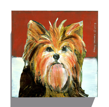 Gallery Canvas - Dog Face - Yorkie