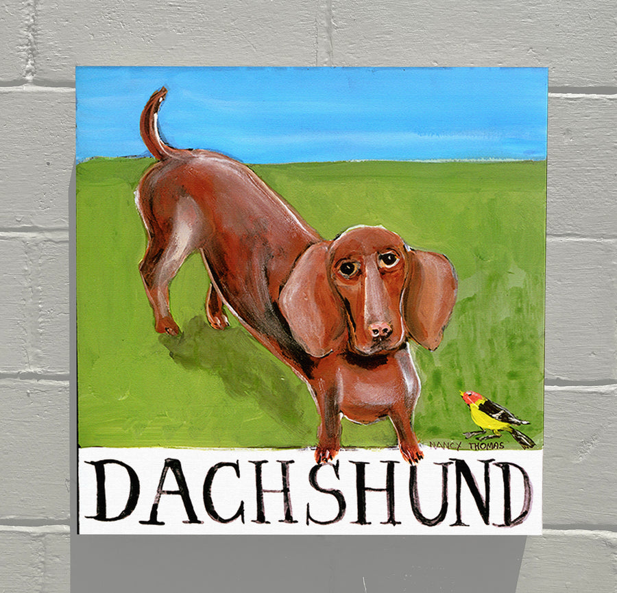 Gallery Grand - Doggie - Dachshund