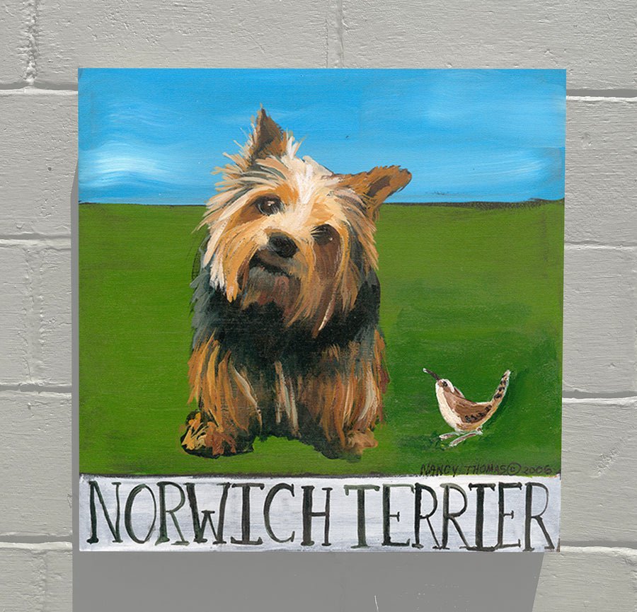 Gallery Grand - Doggie - Norwich Terrier