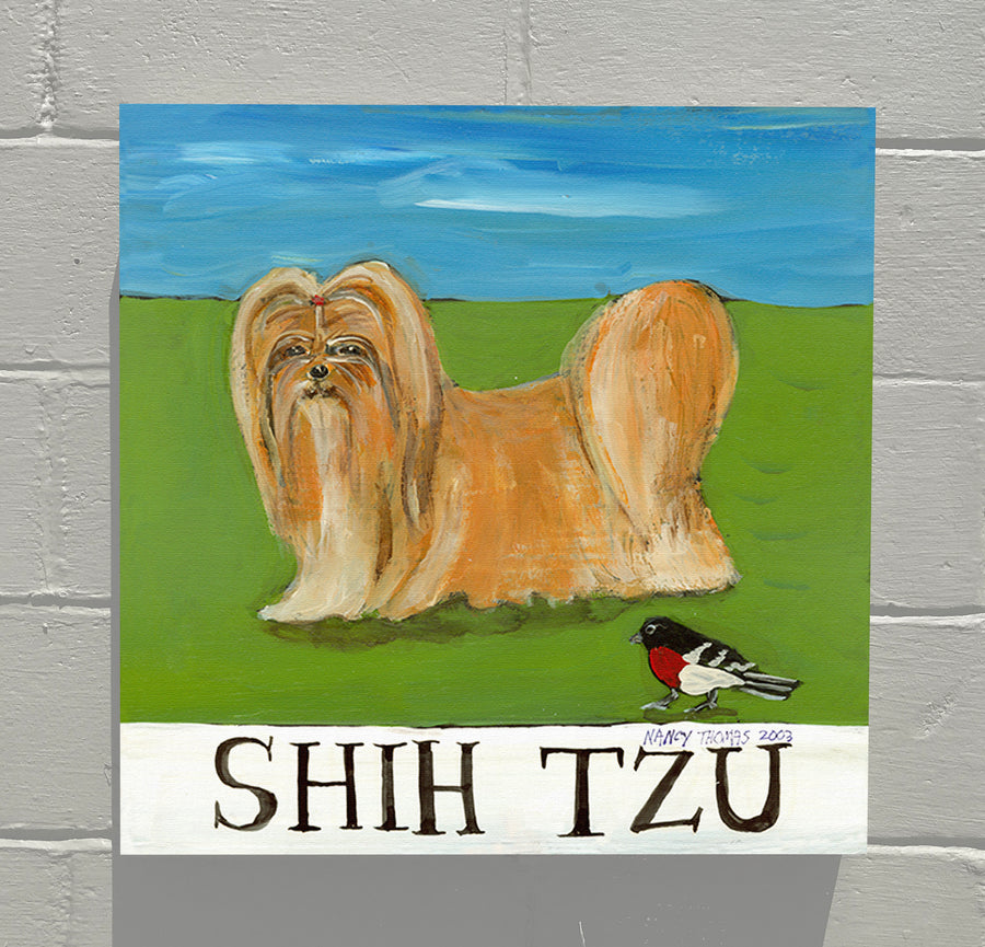 Gallery Canvas - Doggie - Shih Tzu