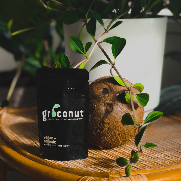 Groconut Plant Tonic (Vegan)