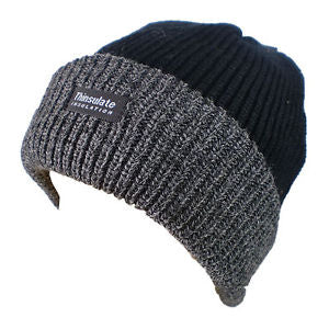 Avenel Rib Knit Thinsulate Beanie with Contrast