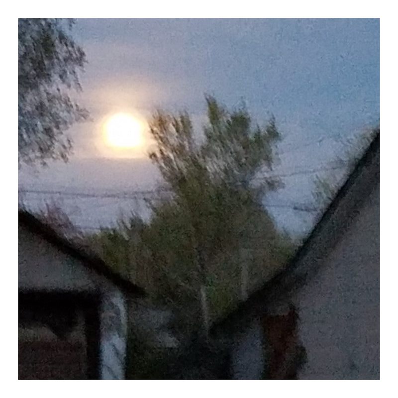 products/Full_Moon_-_Inspiration_Photo_-_Square_-_Border.jpg
