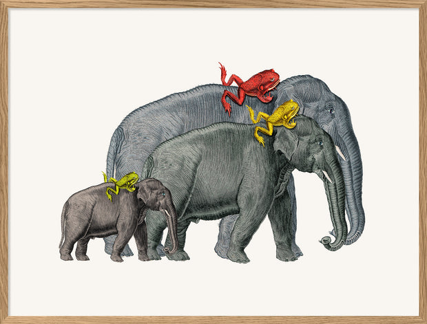 Elephants and Frogs