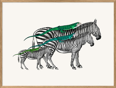 Zebras and Lizards