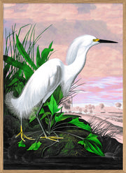 Snowy Heron Remixed